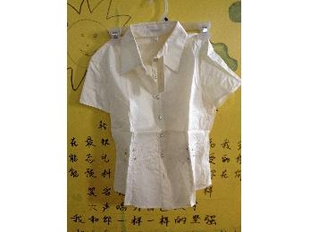 女士绣花短袖衬衫(浅粉)